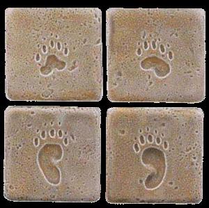 N 10 - Bear Track Set