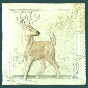 "N 04 - Whitetail Deer 6""x6"""