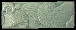 SC 45 - Seaglass Seashell Border